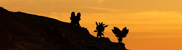 Kalos silhouette section header image